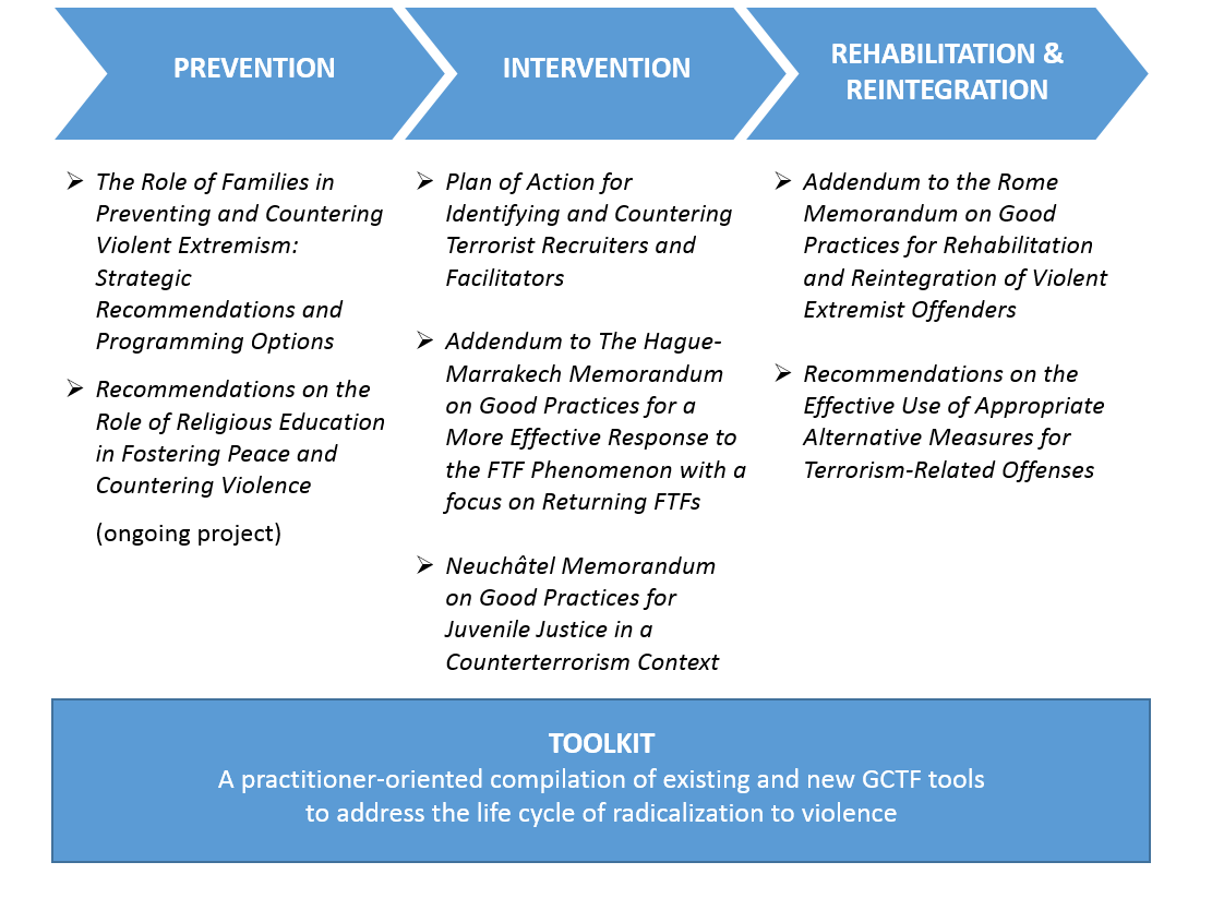 Initiative to Address the Life Cycle of Radicalization to Violence